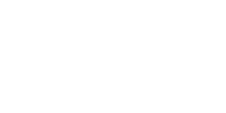 Sina Frei
